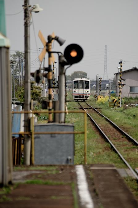 tamamura4-1.jpg