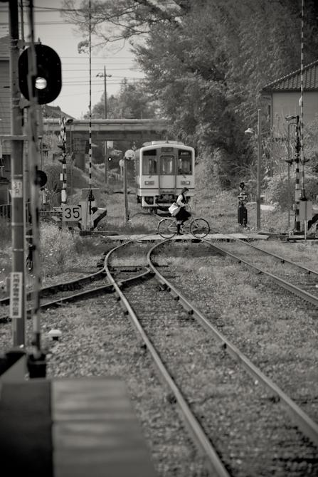 DSC04892-1.jpg
