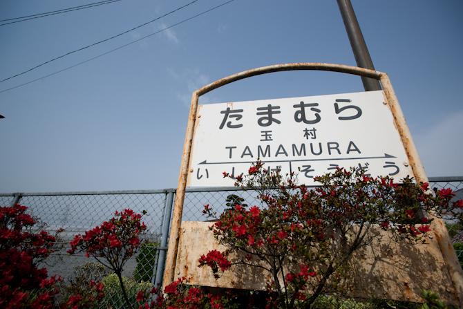 tamamura1-1.jpg